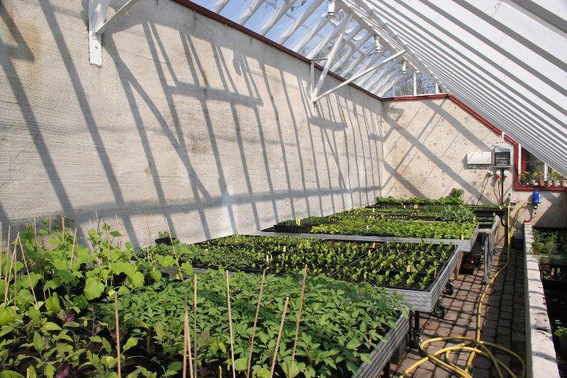 Växthus Odla : Galleri arkitektritade växthus amp orangerier swedengreenhouse